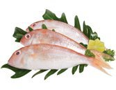Cá hường Phan Thiết (size lớn)