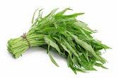 Rau muống hạt (lá dài)